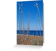 Mediterranean Blue Greeting Card