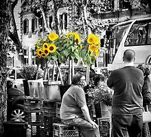 Sunflowers for Sale by KarenLindale