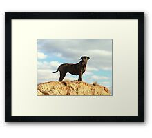 Outback Poses Framed Print