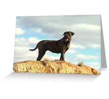 Outback Poses Greeting Card