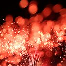 fireworks by david gilliver