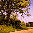 Roadside Oak by Wib Dawson