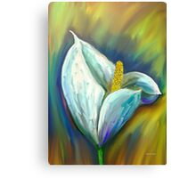 Calla Lily Impressions in the Morning Glow Canvas Print