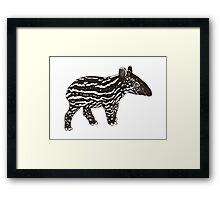 Baby Tapir Framed Print