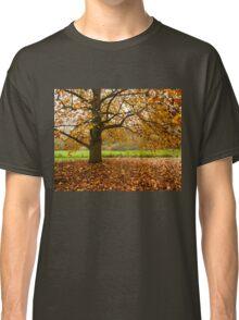 Come and seek comfort Classic T-Shirt