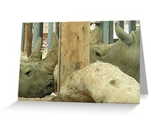 C'mon ! Give us a kiss, you know you want too !! Greeting Card