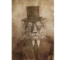 Sir Tiger Photographic Print