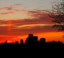 Cobbs Hill Sunset in Spring by Lisa Cook