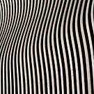 Zebra swing by Javimage