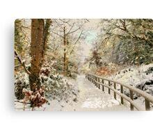 Winter delight Canvas Print