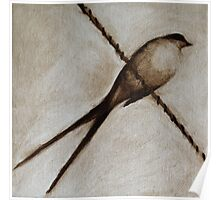 Bird on a wire painting Poster
