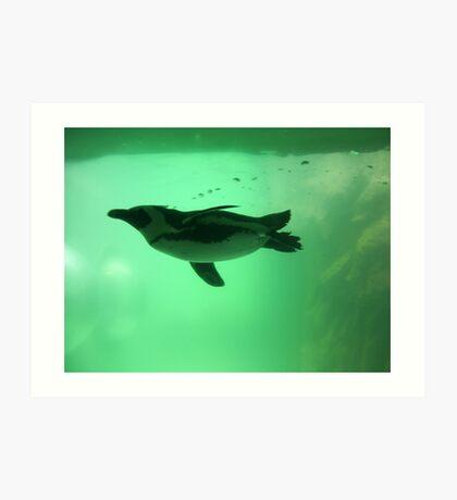 Penguin Swim Art Print