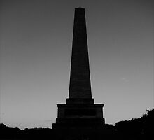 WELLINGTON MONUMENT - PHOENIX PARK  by Colleen2012