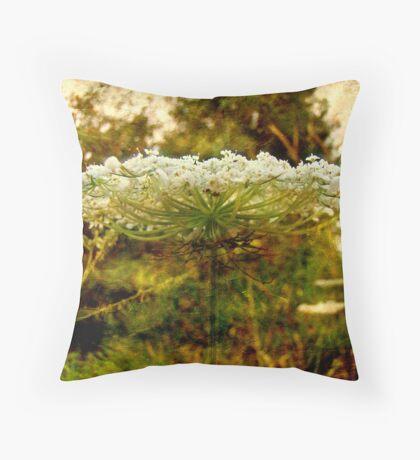 Queen Anne's Lace Wildflower - Daucus carota - Wild Carrot Throw Pillow