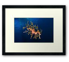 Leafy Framed Print