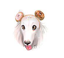 Sprinkle Sugar Pup Photographic Print