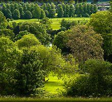 Donnington Grove Newbury by mlphoto