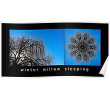Winter Willow Sleeping Poster