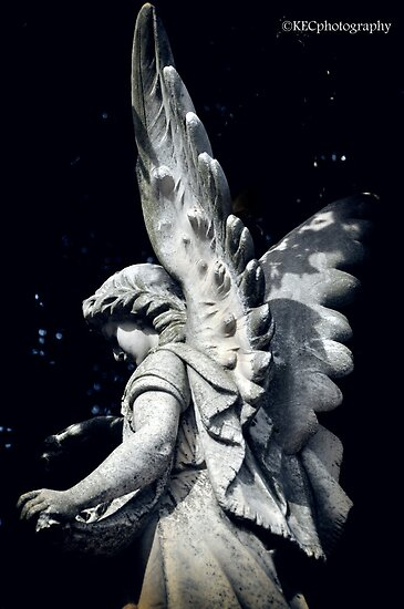 Stone Angel by Karen E Camilleri
