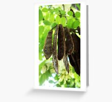 Seeds Pods of Plenty Greeting Card