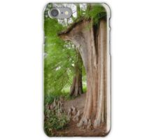 Under the swamp cypresses iPhone Case/Skin