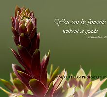 You can be fantastic without a grade. by Sharie Falan