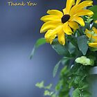 Thank You- by Sharie Falan