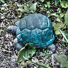Turtle by DreamCatcher/ Kyrah