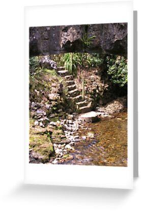 Steps Under the Bridge by lezvee