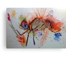 Dragonfly-eye Canvas Print