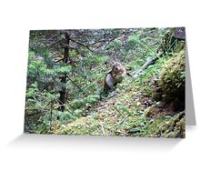 You have one second. Greeting Card