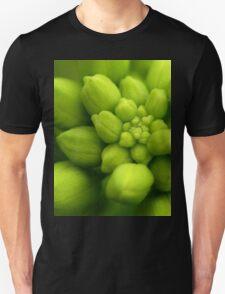 Wildflowers 2 - Hoary Alyssum Buds T-Shirt