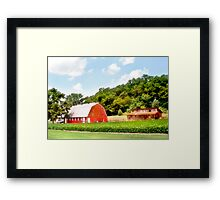 Knee High by the 4th of July Framed Print