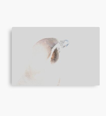Hidden Penguin Canvas Print