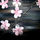 Cherry Blossom by markmoore