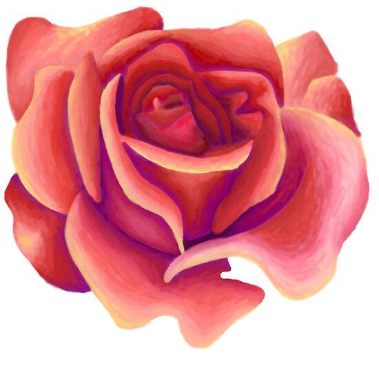 Rose 1 by Alex Birch