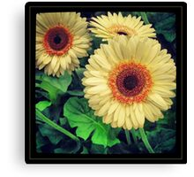 Yellow and Orange Flowers Canvas Print