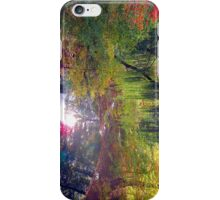 willow pond iPhone Case/Skin