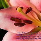 Psalm 19:14 (Day 11) by tonysphotospot