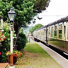 Train at Dunster Station. by littleredbird