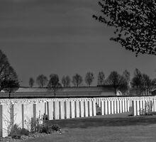 Never Forgotten, War Memorials by Mandy  Harvey