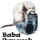 Baba Ganoush R.I.P. Nov 17, 2006 to July 08, 2013 by TubularBelle