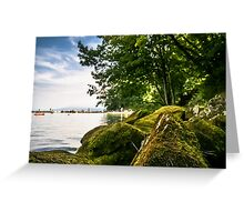 mossy rock on the beach Greeting Card