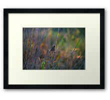 Good morning! Framed Print