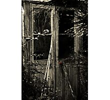 Old Potting Shed Photographic Print
