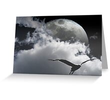Seagull and the Moon Greeting Card