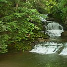 Falls in Ithaca NY by Penny Rinker
