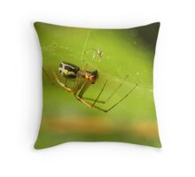 In A Silken Dome Throw Pillow