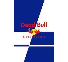 Dead Bull Photographic Print