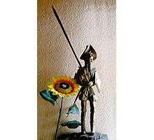 Don Quixote III Photographic Print